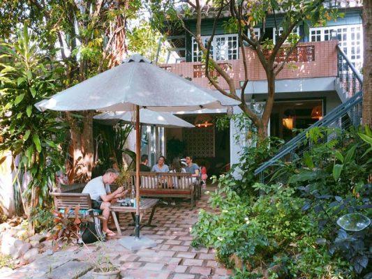 các loại cây trồng trong quán cafe