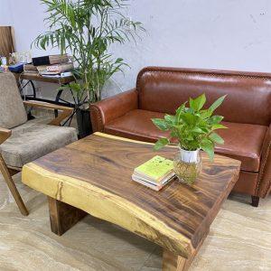 Bàn ghế phòng khách gỗ nguyên khối TS608